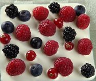 Mix of varied berries and cream Stock Image