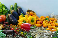 Free Mix Vegetable And Fruit Still Life Royalty Free Stock Photos - 64114438