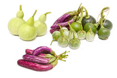 Mix vegetable: Bottle Gourd,Cockroach Berry, Eggplant and Young Royalty Free Stock Photo