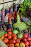 Mix vegetable in wooden box Royalty Free Stock Photo