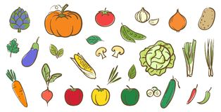 Mix vegetables collection, cute colorful vector illustration in Stock Photo