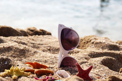 Mix of vivid starfishes on the beach and female sunglasses Royalty Free Stock Images