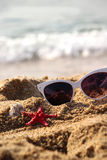 Mix of vivid starfishes on the beach and female sunglasses Stock Images
