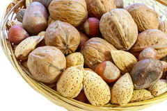 Mix of walnut, brazilian nut, hazelnut, pecan, almond. Isolated Stock Images