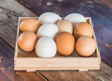 Mix white and brown color eggs  put on the wood floor Royalty Free Stock Photo