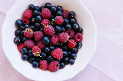 Mix of wild raspberry and black currant in bowl, close up Royalty Free Stock Photography
