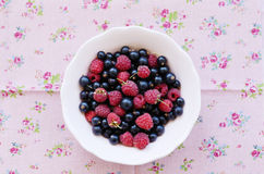 Mix of wild raspberry and black currant in bowl Stock Image
