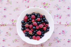 Mix of wild raspberry and black currant in pink bowl Stock Photography