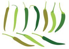 Green chilli on white background vector illustration