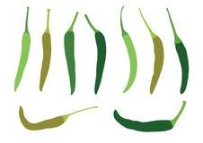 Green chilli and fresh on white background stock illustration