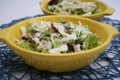 Mixe salad with ham and cheese Royalty Free Stock Photo
