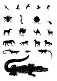 Mixed animal silhouettes set Royalty Free Stock Photos