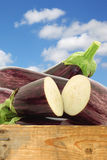 Mixed aubergines and a cut one Royalty Free Stock Image