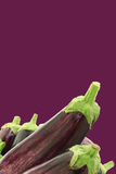 Mixed aubergines on a purple background Royalty Free Stock Image