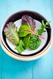 Mixed baby leaf salad in bowl. Mixed baby leaf salad of red chard, arugula, red lettuce and tatsoi in small bowls on a aquamarine wooden table, Selective focus Stock Photos