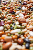 Mixed beans. Royalty Free Stock Photo