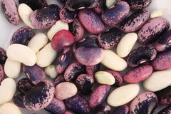 Free Mixed Beans Stock Photography - 11805602