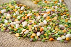 Mixed Beans Royalty Free Stock Images