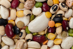 Mixed Beans Stock Image