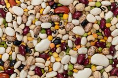 Mixed Beans Royalty Free Stock Photography