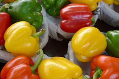 Mixed bell peppers. Assorted bell peppers in red, yellow, green and orange Royalty Free Stock Photography