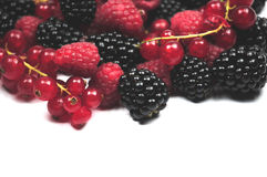 Mixed berries. An assortment of mixed berries Stock Photos
