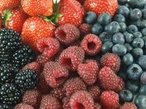 Mixed berries. Berries - blackberries, raspberries, strawberries, blueberries as a background royalty free stock photos