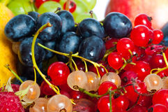 Mixed berries Royalty Free Stock Images