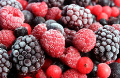Mixed berries stock images