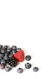 Mixed Berries. Isolated on a white background royalty free stock photography