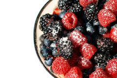 Mixed berries. Bowl of mixed berries with sugar on top Royalty Free Stock Images