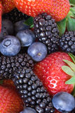 Mixed Berries Background Stock Photography