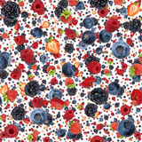Mixed Berries background (on white) Stock Images