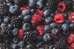 Mixed berries, blueberry, raspberry Stock Images