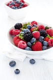 Mixed berries in a bowl Royalty Free Stock Photography