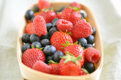 Mixed berries Stock Photography