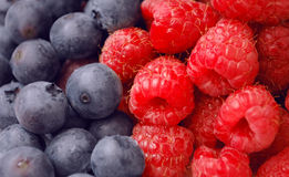 Mixed berries closeup Royalty Free Stock Image