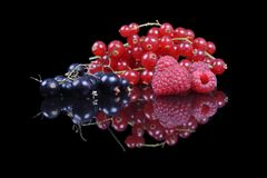 Mixed berries and currants. On a black reflective background Stock Photography