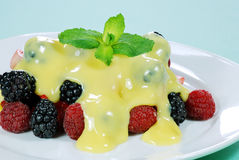 Mixed berries with custard and mint on top Stock Images