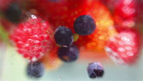 Mixed berries falling down in water stock footage