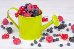 Mixed berries in small decorative watering can Royalty Free Stock Photography