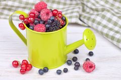 Mixed berries in small decorative watering can Stock Images