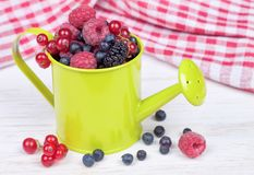 Mixed berries in small decorative watering can Royalty Free Stock Image
