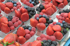 Mixed Berries at Sunday Market in Prague. Strawberries, raspberries, blue berries and black berries in plastic box at Sunday Market in Praguenn Stock Images