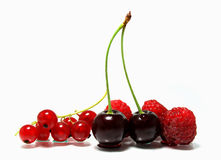 MIXED BERRY stock image