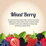Mixed berry card. Additional in eps 10 Stock Photo