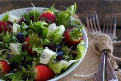 Mixed berry Salad Royalty Free Stock Photo