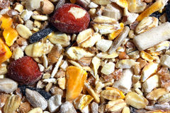 Mixed bird food Royalty Free Stock Photos