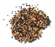 Mixed bird seed isolated on white Stock Images