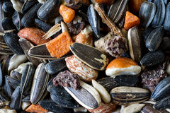 Mixed Bird Seed and Nuts. An assortment of bird seed, nuts and dried fruit Stock Photography